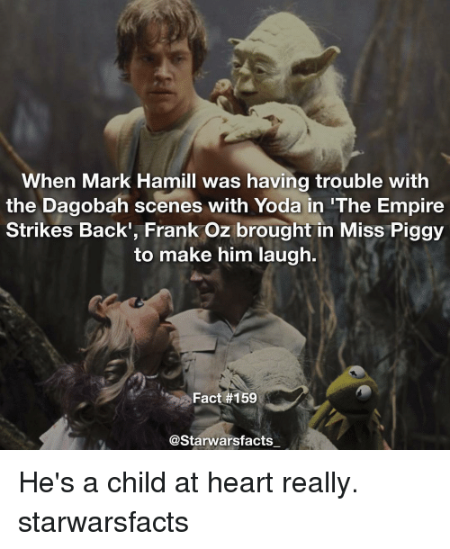 The Empire Strikes Back: When Mark Hamill was having trouble with  the Dagobah scenes with Yoda in The Empire  Strikes Back', Frank Oz brought in Miss Piggy  to make him laugh.  Fact #159  @Starwarsfacts He's a child at heart really. starwarsfacts