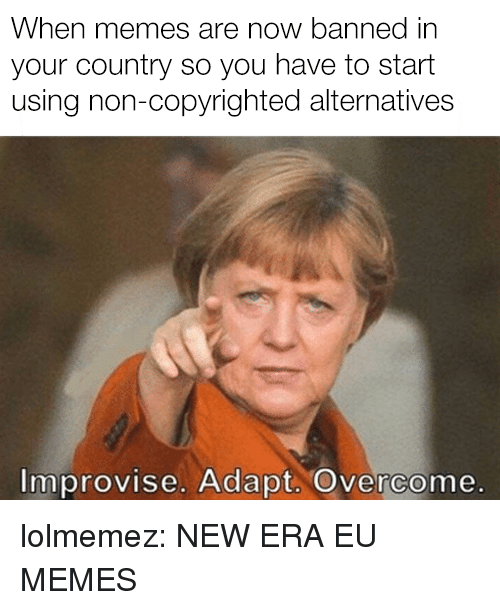 Memes, Target, and Tumblr: When memes are now banned in  your country so you have to start  using non-copyrighted alternatives  Improvise. Adapt. Overcome. lolmemez: NEW ERA EU MEMES
