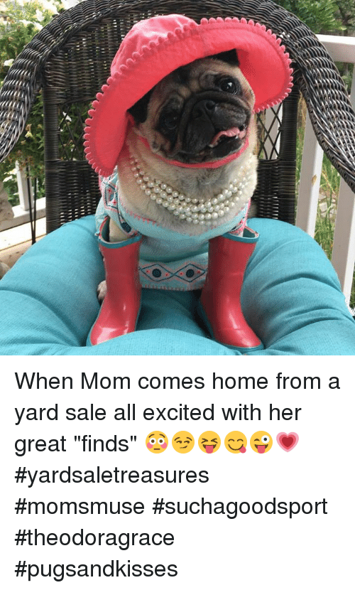 """Memes, Home, and Mom: When Mom comes home from a yard sale all excited with her great """"finds"""" 😳😏😝😋😜💗#yardsaletreasures #momsmuse #suchagoodsport #theodoragrace #pugsandkisses"""