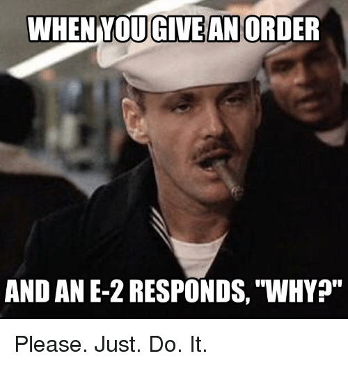 "Just Do It, Memes, and 🤖: WHEN MOU GIVE AN ORDER  AND AN E-2 RESPONDS, ""WHY Please. Just. Do. It."