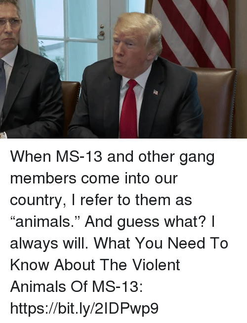 "Animals, Gang, and Guess: When MS-13 and other gang members come into our country, I refer to them as ""animals."" And guess what? I always will.   What You Need To Know About The Violent Animals Of MS-13: https://bit.ly/2IDPwp9"