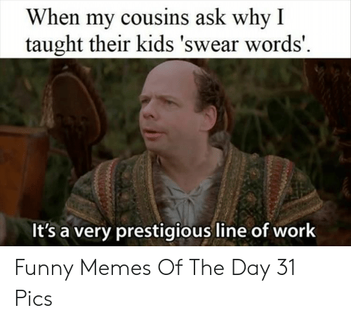 cousins: When my cousins ask why I  taught their kids 'swear words'  It's a very prestigious line of work Funny Memes Of The Day 31 Pics