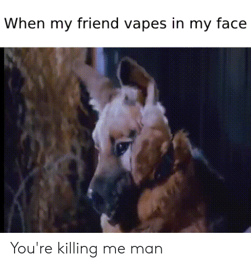 youre killing me: When my friend vapes in my face You're killing me man