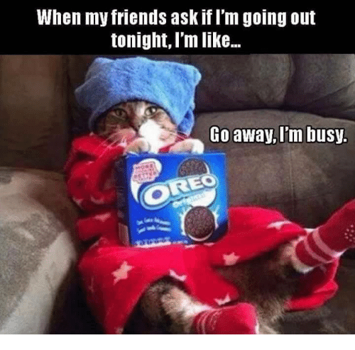 Friends, Memes, and 🤖: When my friends ask if Im going out  tonight, I'm like...  Go away, Im busy.