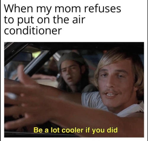 You Did: When my mom refuses  to put on the air  conditioner  Be a lot cooler if you did