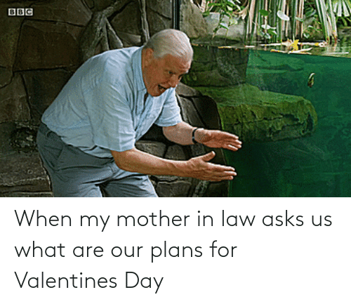 In Law: When my mother in law asks us what are our plans for Valentines Day