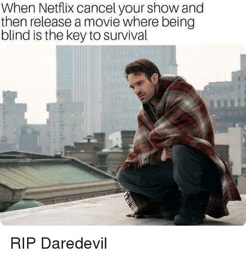 the key: When Netflix cancel your show and  then release a movie where being  blind is the key to survival RIP Daredevil