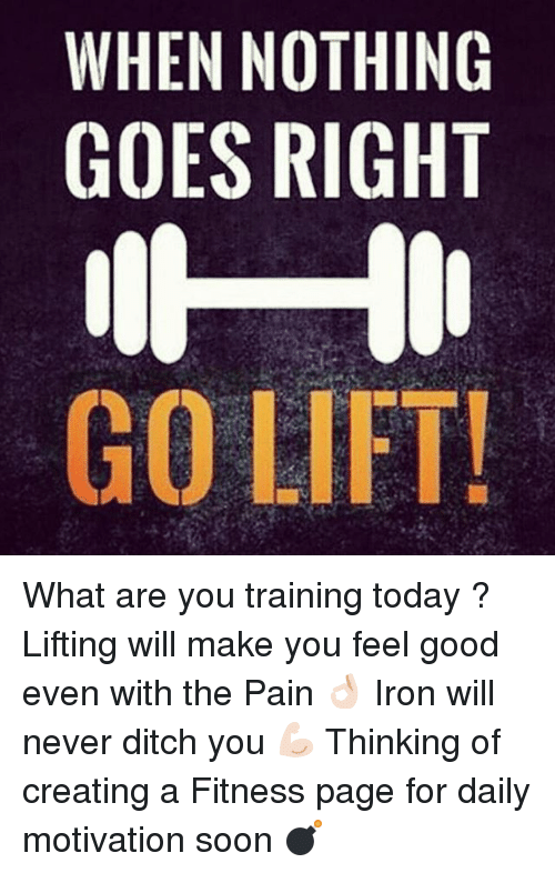 Soon..., Good, and Today: WHEN NOTHING  GOES RIGHT  GO LIFT! What are you training today ? Lifting will make you feel good even with the Pain 👌🏻 Iron will never ditch you 💪🏻 Thinking of creating a Fitness page for daily motivation soon 💣