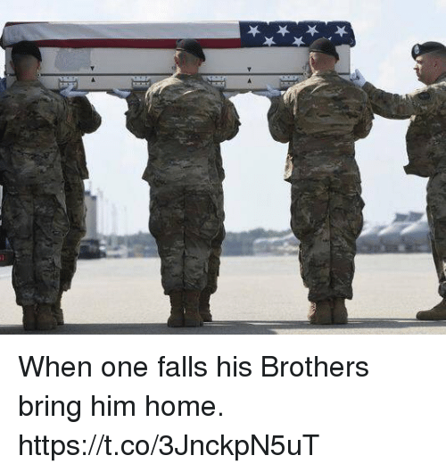 Memes, Home, and 🤖: When one falls his Brothers bring him home. https://t.co/3JnckpN5uT