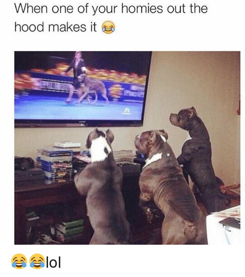 Memes, The Hood, and Hood: When one of your homies out the  hood makes it 😂😂lol