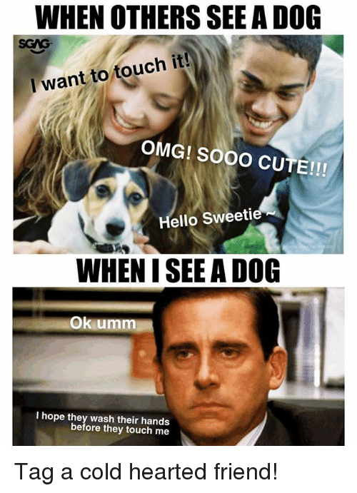 Cute, Hello, and Memes: WHEN OTHERS SEE A DOG  SGAG  I want to touch it!  OMG! SOOO CUTE!!!  Hello Sweetie  WHEN I SEE A DOG  Ok umm  I hope they wash their hands  before they touch me Tag a cold hearted friend!