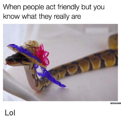Dank, Lol, and 🤖: When people act friendly but you  know what they really are Lol