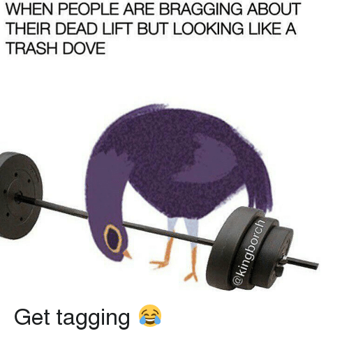 Dove, Memes, and 🤖: WHEN PEOPLE ARE BRAGGING ABOUT  THEIR DEAD LIFT BUT LOOKING LIKE A  TRASH DOVE Get tagging 😂