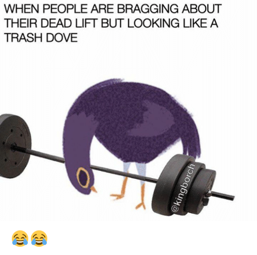 Trash Dove: WHEN PEOPLE ARE BRAGGING ABOUT  THEIR DEAD LIFT BUT LOOKING LIKE A  TRASH DOVE 😂😂