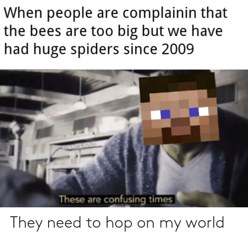 huge spiders: When people are complainin that  the bees are too big but we have  had huge spiders since 2009  Darknife  These are confusing times They need to hop on my world