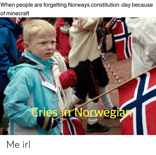constitution day: When people are forgetting Norways constitution-day because  of minecraft  Cries ia Norwegiá Me irl