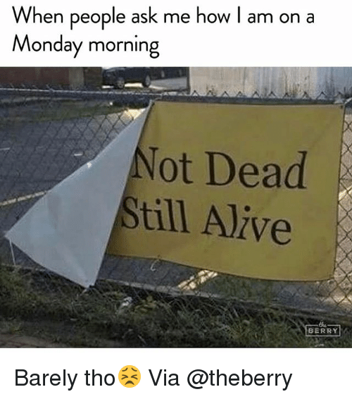 Alive, Funny, and Monday: When people ask me how I am on a  Monday morning  ot Dead  till Alive  BERRY Barely tho😣 Via @theberry
