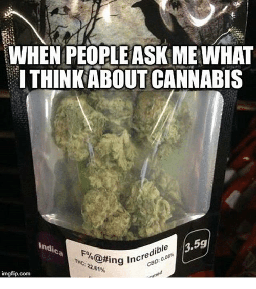 Memes, Cannabis, and 🤖: WHEN PEOPLE ASK ME WHAT  ITHINKABOUT CANNABIS  ndic  3.59  dible  ring increa  imgflip.com