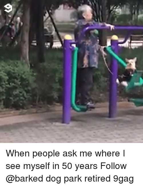 Dog Park: When people ask me where I see myself in 50 years Follow @barked dog park retired 9gag