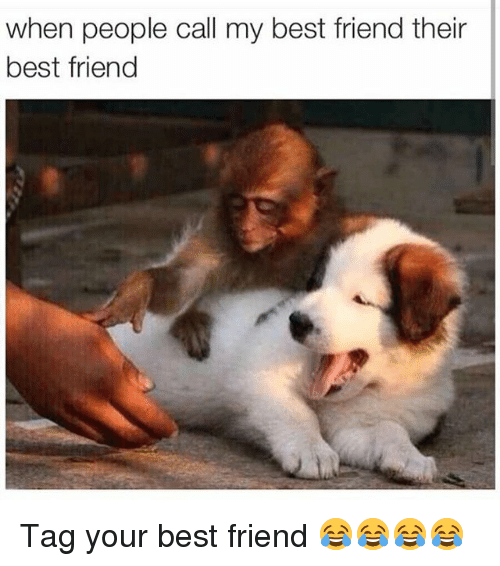 Best Friend, Friends, and Funny: when people call my best friend their  best friend Tag your best friend 😂😂😂😂