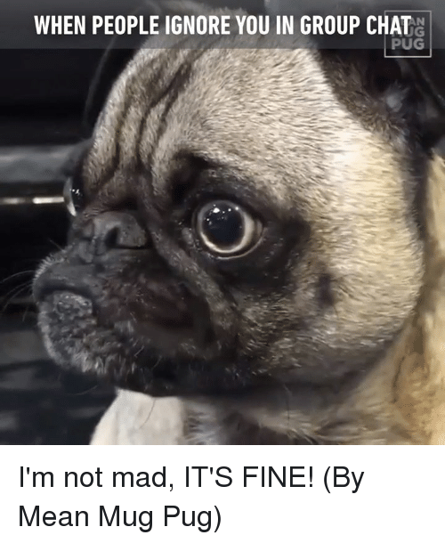 ugs: WHEN PEOPLE IGNORE YOU IN GROUP CHAT  UG  PUG I'm not mad, IT'S FINE! (By Mean Mug Pug)
