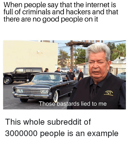 Hackers: When people say that the internet is  full of criminals and hackers and that  there are no good people on it  Those bastards lied to me This whole subreddit of 3000000 people is an example