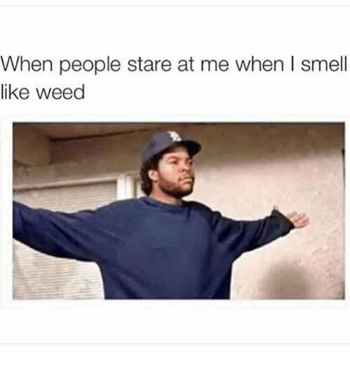 Memes, Smell, and Weed: When people stare at me when I smell  like weed