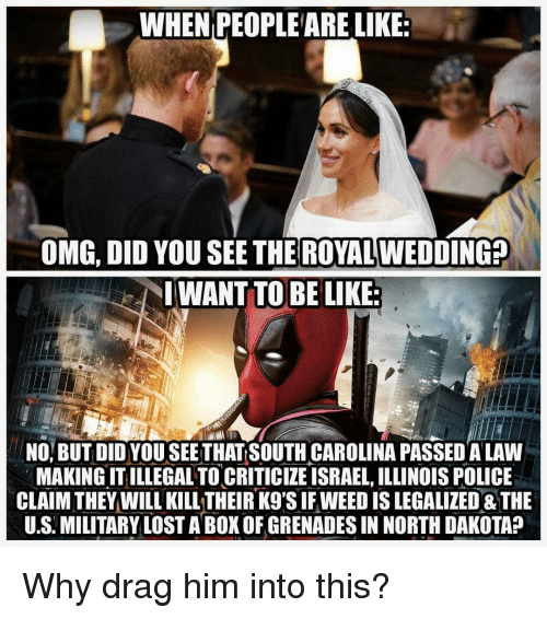 Be Like, Omg, and Police: WHEN PEOPLEARE LIKE  ROYAL  OMG, DID YOU SEE THE WEDDING?  IWANT TO BE LIKE  NOI BUT DID YOU SEETHATSOUTH CAROLINA PASSED A LAW  MAKING IT ILLEGAL TO CRITICIZE ISRAEL, ILLINOIS POLICE  LAIM THEYWILL KILL THEIR K9'S IF WEED IS LEGAL THE  U.S. MILITARY LOST A BOK OF GRENADES IN NORTH DAKOTA?