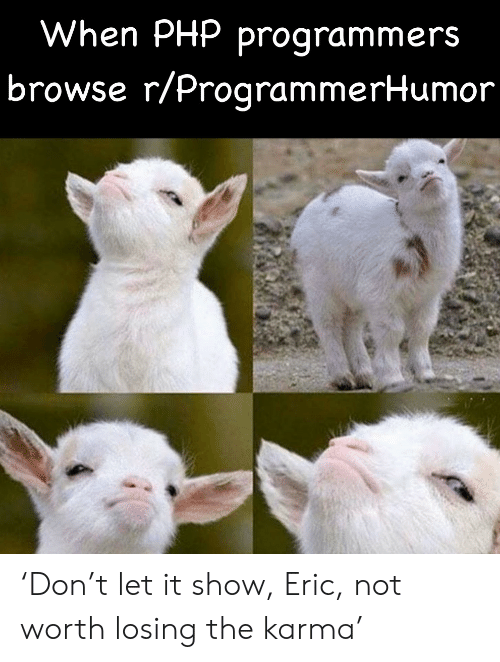 browse: When PHP programmers  browse r/ProgrammerHumor 'Don't let it show, Eric, not worth losing the karma'