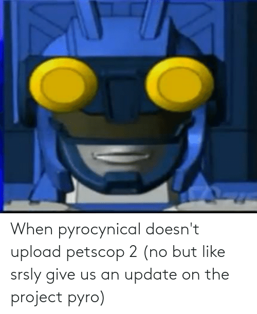 Pyrocynical: When pyrocynical doesn't upload petscop 2 (no but like srsly give us an update on the project pyro)