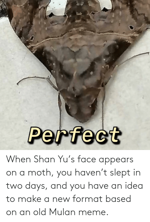Mulan: When Shan Yu's face appears on a moth, you haven't slept in two days, and you have an idea to make a new format based on an old Mulan meme.