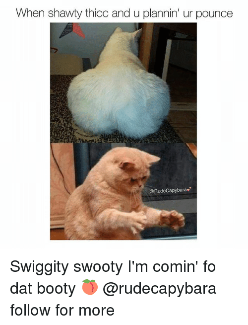 Booty, Memes, and Shawty: When shawty thicc and u plannin' ur pounce  @RudeCapybarav Swiggity swooty I'm comin' fo dat booty 🍑 @rudecapybara follow for more