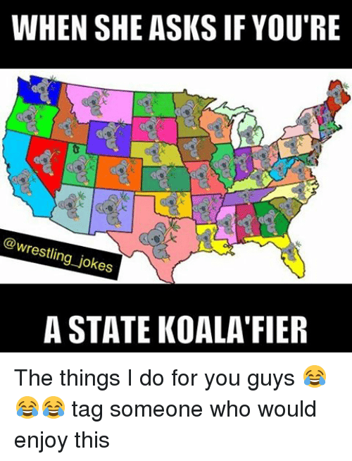 Koalaing: WHEN SHE ASKS IF YOU'RE  @wrestling jokes  A STATE KOALA FIER The things I do for you guys 😂😂😂 tag someone who would enjoy this