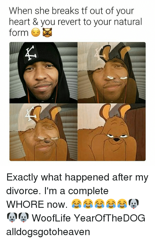 Heart, Divorce, and Dank Memes: When she breaks tf out of your  heart & you revert to your natural  form Exactly what happened after my divorce. I'm a complete WHORE now. 😂😂😂😂😂🐶🐶🐶 WoofLife YearOfTheDOG alldogsgotoheaven