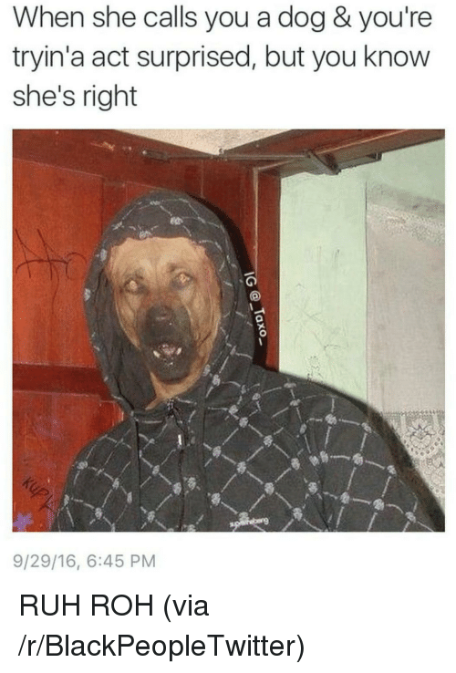 Ruh: When she calls you a dog & you're  tryin'a act surprised, but you know  she's right  9/29/16, 6:45 PM <p>RUH ROH (via /r/BlackPeopleTwitter)</p>