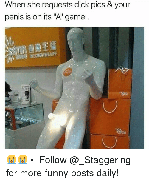 "Dick Pics, Funny, and Memes: When she requests dick pics & your  penis is on its ""A"" game. 😭😭 • ➫➫➫ Follow @_Staggering for more funny posts daily!"