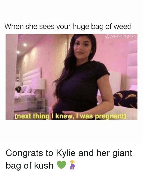 Pregnant, Weed, and Giant: When she sees your huge bag of weed  @Weedhumo  tnext thing i knew, I was pregnant Congrats to Kylie and her giant bag of kush 💚🤰