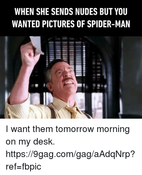 9gag, Dank, and Nudes: WHEN SHE SENDS NUDES BUT YOU  WANTED PICTURES OF SPIDER-MAN I want them tomorrow morning on my desk. https://9gag.com/gag/aAdqNrp?ref=fbpic