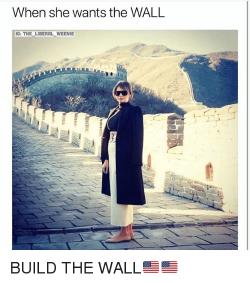 build-the-wall: When she wants the WALL  G: THE LIBERAL WEENIE BUILD THE WALL🇺🇸🇺🇸