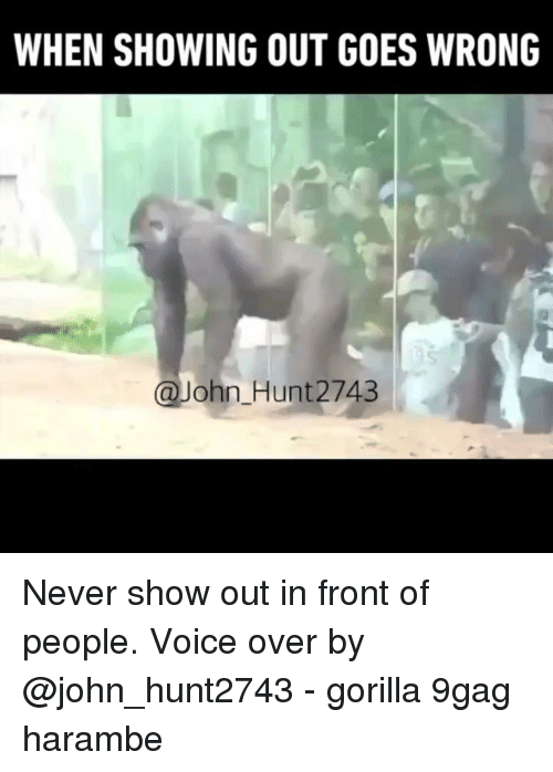 9gag, Memes, and Voice: WHEN SHOWING OUT GOES WRONG  @John Hunt2743 Never show out in front of people. Voice over by @john_hunt2743 - gorilla 9gag harambe
