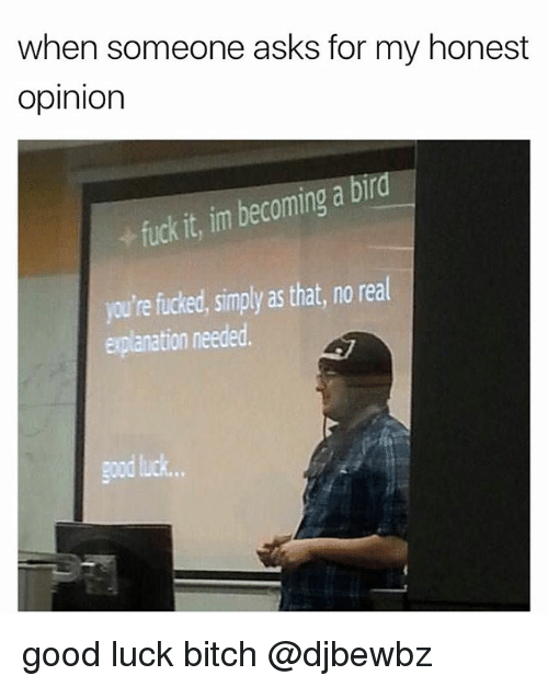 Bitch, Memes, and Good: when someone asks for my honest  opinion  ra  it, im becoming a bi  re fucked, simply as that, no real  jou'  explanation needed.  good luck.. good luck bitch @djbewbz