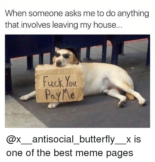 Dank, Fuck You, and Meme: When someone asks me to do anything  that involves leaving my house.  Fuck You  PayNe @x__antisocial_butterfly__x is one of the best meme pages