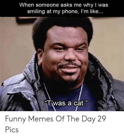 """memes of the day: When someone asks me whyI was  smiling at my phone, I'm like...  """"Twas a cat. Funny Memes Of The Day 29 Pics"""