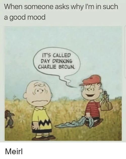 charlie brown: When someone asks why I'm in such  a good mood  TS CALLED  DAY DRINKING  CHARLIE BROWN. Meirl
