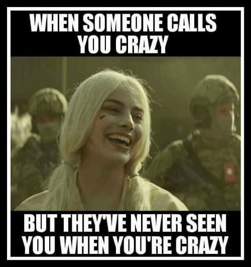 youre crazy: WHEN SOMEONE CALLS  YOU CRAZY  BUT THEYVE NEVER SEEN  YOU WHEN YOU'RE CRAZY