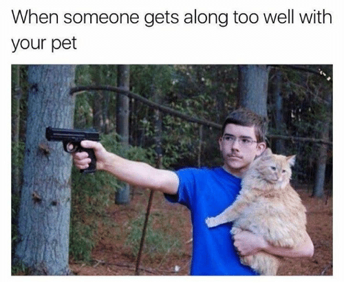 memes: When someone gets along too well with  your pet