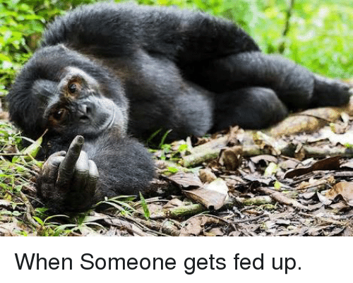 fed up: When Someone gets fed up.