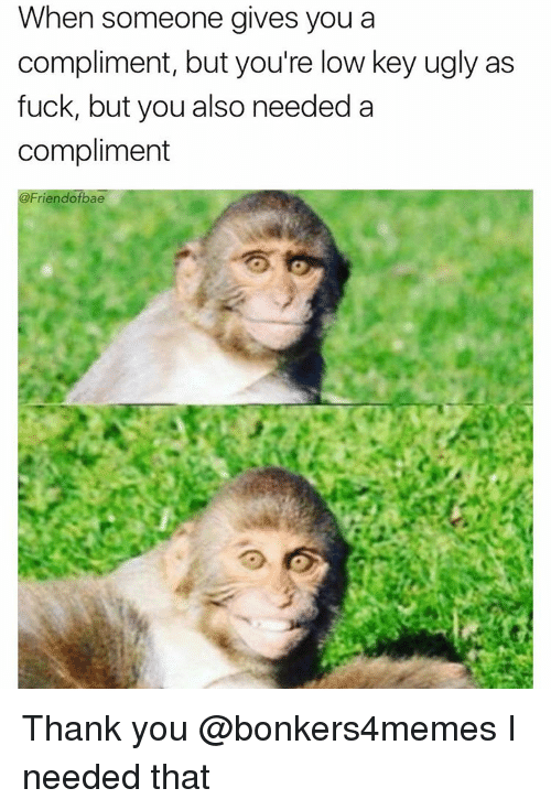 Friendo: When someone gives you a  compliment, but you're ow key ugly as  fuck, but you also needed a  compliment  Friendo Thank you @bonkers4memes I needed that