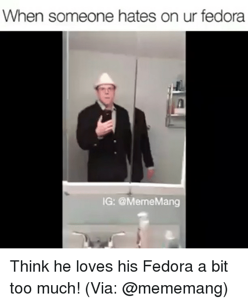 Fedora, Memes, and 🤖: When someone hates on ur fedora  IG: @Meme Mang Think he loves his Fedora a bit too much! (Via: @mememang)