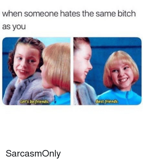 Bitch, Friends, and Funny: when someone hates the same bitch  as you  ets befriends  Best friends SarcasmOnly